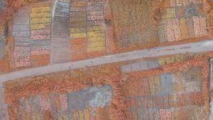 Detail_Mosaic_Bairro_Ferroviario